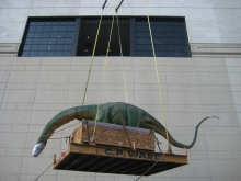 Moving a robotic dinosaur exhibit which required specialized crane service for delivery